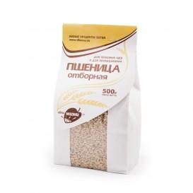 Пшеница отборная 500 г (Образ жизни)
